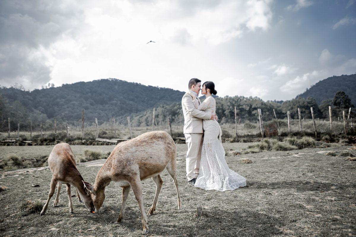 prewedding lembang